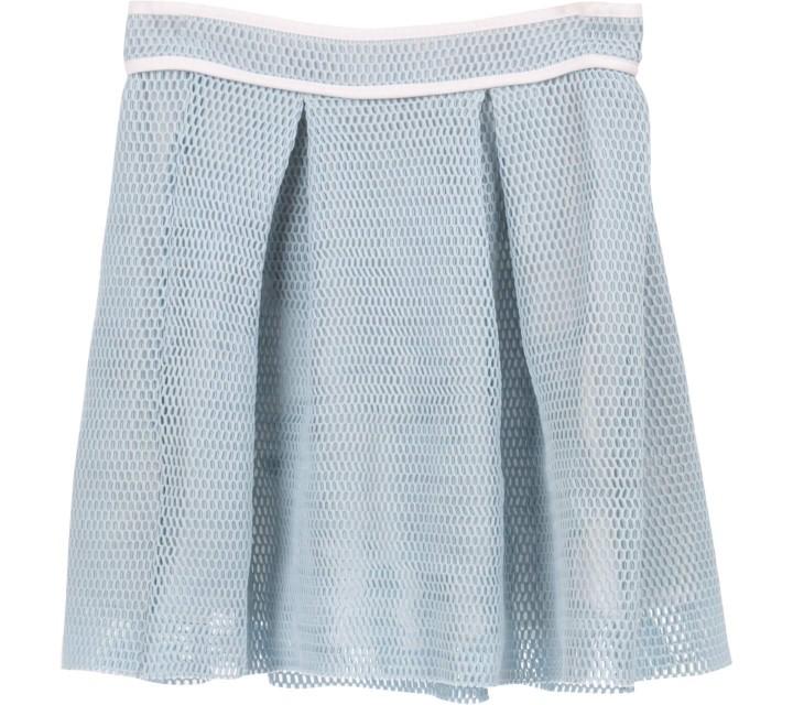 Endless Rose Blue Skirt