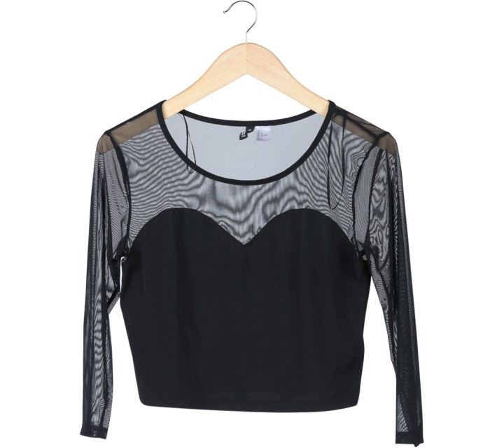Divided Black Transparent Cropped Blouse