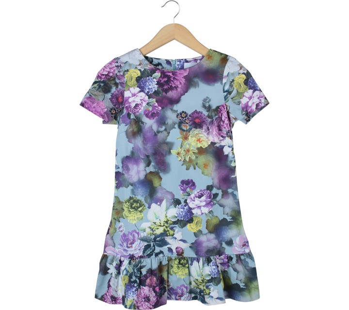 Asos Multi Colour Floral Mini Dress