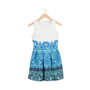 Blue and White Sleeveless Mini Dress
