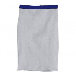 Zara Grey And Blue Skirt