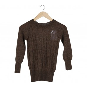 Zara Brown Sweater