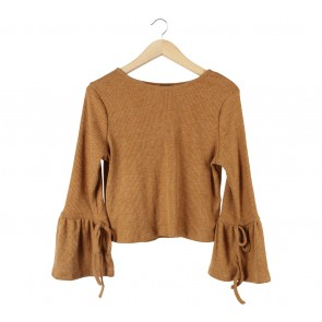 Cloth Inc Light Brown Bell Sleeve Blouse