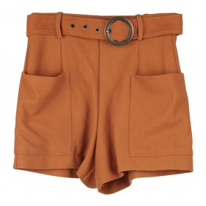 Zara  Brown Pants