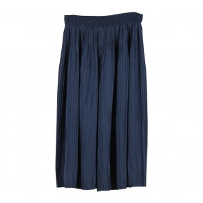 Lilac Dark Blue Pleated Pants