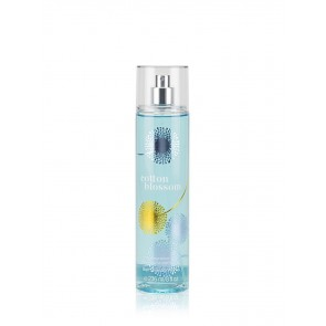 B&BW  Fragrance