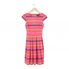 Dorothy Perkins Multi Colour Striped Mini Dress