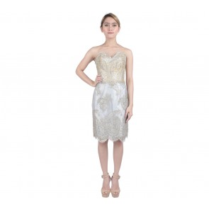 Marga Alam Grey And Gold Tube Sequins Mini Dress
