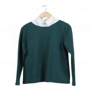 Cotton Ink Green Textured Sweater