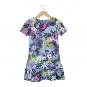 Asos Multi Colour Floral Mini Dress