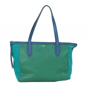 Fossil Green And Blue Tote Bag