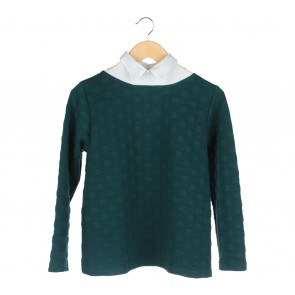 Cotton Ink Green And White Sweater