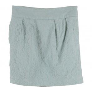 Zara Tosca Skirt